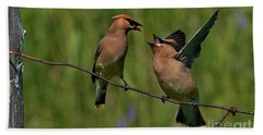 Waxwing Love.. Hand Towel