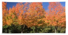 Hand Towel featuring the photograph Welcome Autumn by Gordon Elwell