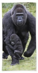Western Lowland Gorilla Walking Hand Towel by Duncan Usher