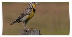 Western Meadowlark.. Bath Towel