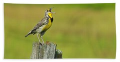 Western Meadowlark Hand Towel by Tony Beck