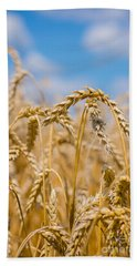 Wheat Hand Towel by Cheryl Baxter