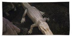 White Alligator Hand Towel