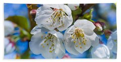 White Cherry Blossoms Blooming In The Springtime Bath Towel
