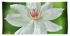 White Clematis Hand Towel by Richard Farrington