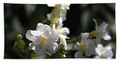 Hand Towel featuring the photograph White Flower - Early Spring Time by Ramabhadran Thirupattur
