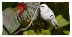 White Hummingbird Bath Towel
