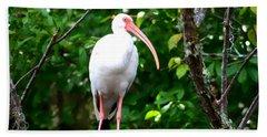 White Ibis Hand Towel by Debra Forand