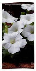 Bath Towel featuring the photograph White Petunia Blooms by James C Thomas