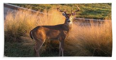 White Tail Hand Towel