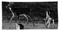 White Tailed Deer Bath Towel by Chris Flees