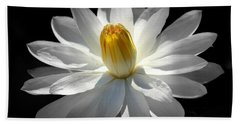 White Water Lily #2 Bath Towel