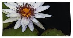 White Water Lily Hand Towel by Yvonne Wright
