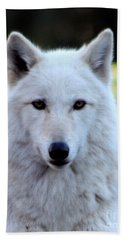 White Wolf Close Up Hand Towel
