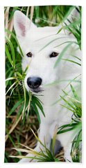 Hand Towel featuring the photograph White Wolf by Erika Weber