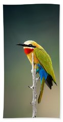 Whitefronted Bee-eater Bath Towel