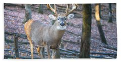 Whitetail Buck Bath Towel