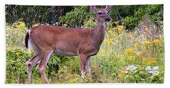 Whitetail Deer Hand Towel