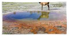 Bath Towel featuring the photograph Wild And Free In Yellowstone by Teresa Zieba