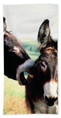 Wild Burros Custer State Park South Bath Towel