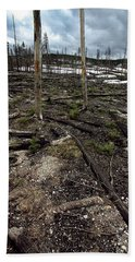 Bath Towel featuring the photograph Wild Fire Aftermath by Amanda Stadther