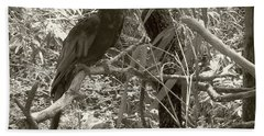 Hand Towel featuring the photograph Wild Hawaiian Parrot Sepia by Joseph Baril