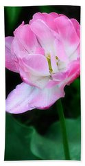 Wild Pink Rose Hand Towel
