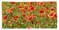 Hand Towel featuring the photograph Wild Red Daisies #1 by Robert ONeil