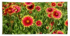 Hand Towel featuring the photograph Wild Red Daisies #4 by Robert ONeil