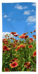 Hand Towel featuring the photograph Wild Red Daisies #5 by Robert ONeil