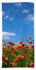 Hand Towel featuring the photograph Wild Red Daisies #6 by Robert ONeil
