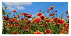 Hand Towel featuring the photograph Wild Red Daisies #7 by Robert ONeil