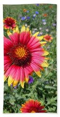 Hand Towel featuring the photograph Wild Red Daisy #1 by Robert ONeil