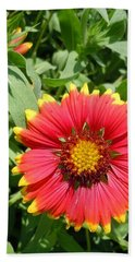 Hand Towel featuring the photograph Wild Red Daisy #2 by Robert ONeil