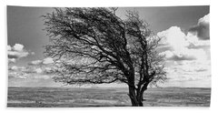 Windswept Tree On Knapp Hill Hand Towel