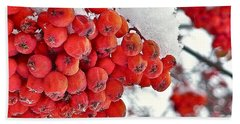 Winter Berries Bath Towel