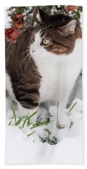 Hand Towel featuring the photograph Winter Cat by Laura Melis