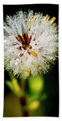 Hand Towel featuring the photograph Winter Dandelion by Pedro Cardona