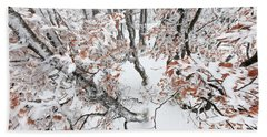 Winter European Beech Forest In Vosges Bath Towel