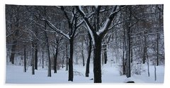 Hand Towel featuring the photograph Winter In The Park by Dora Sofia Caputo Photographic Art and Design