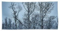 Winter Morning View Hand Towel