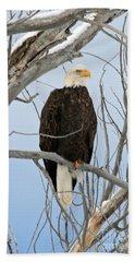 Winter Perch Hand Towel by Bob Hislop