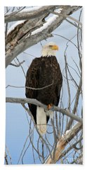 Winter Perch Bath Towel by Bob Hislop