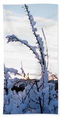 Winter Bath Towel by Terry Reynoldson