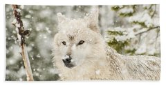 Wolf In Snow Bath Towel