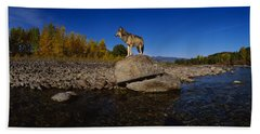 Wolf Standing On A Rock Hand Towel