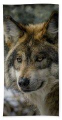 Wolf Upclose 2 Hand Towel