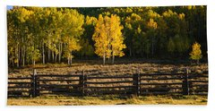 Wooden Fence And Aspen Trees Bath Towel