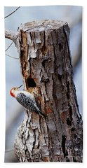 Woodpecker And Starling Fight For Nest Hand Towel by Gregory G. Dimijian