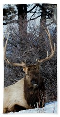 Wyoming Elk Bath Towel